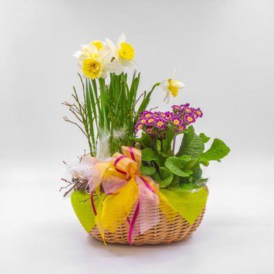 Geschenkkorb Frühling Nr. 4 von Blumen Weimar in Neu-Ulm